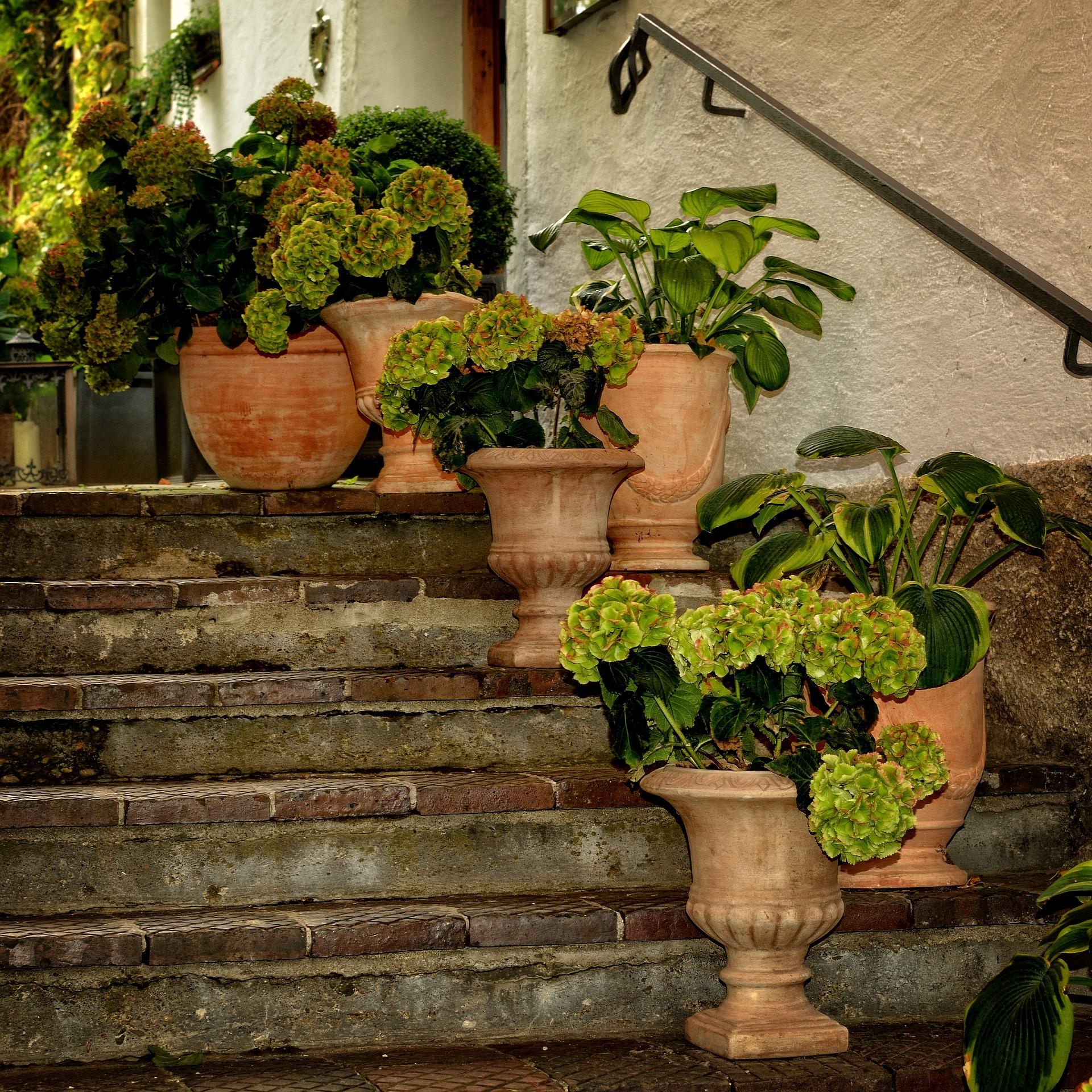 Vasi da esterno: uno stile unico per il tuo cortile